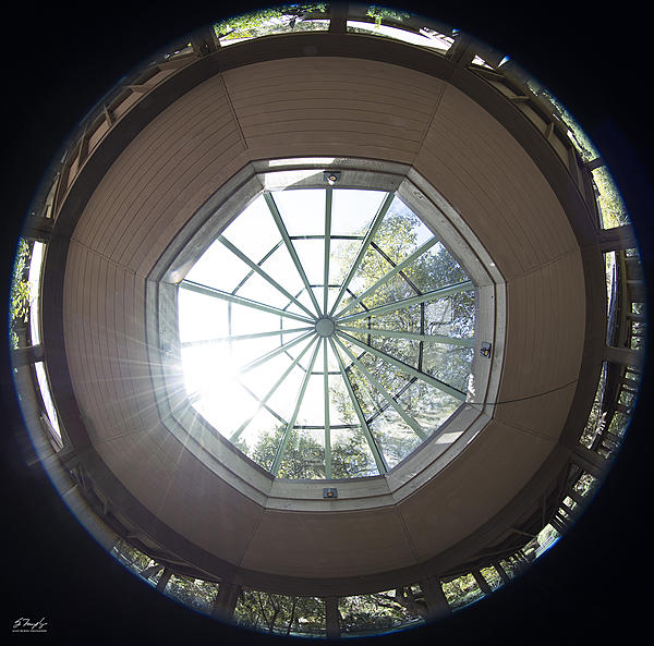 A couple of hours at Brookgreen Gardens-skylight.jpg