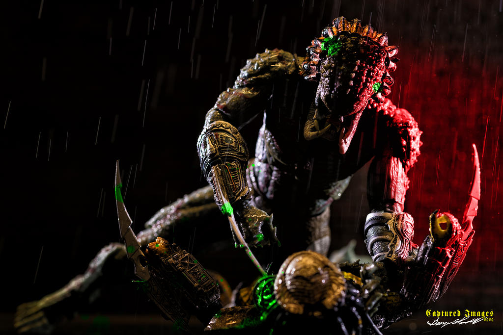 Toy Photography - Let's see them.-w_d85_3733.jpg