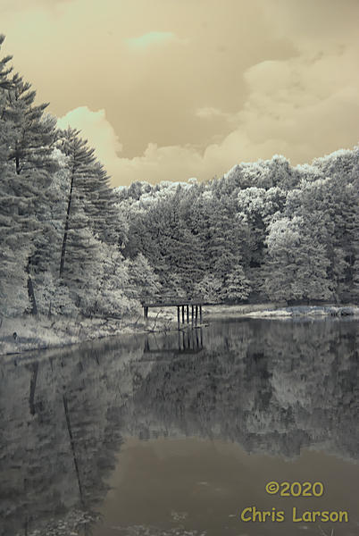 Post Your Infrared Shots-tfwn8kq.jpg