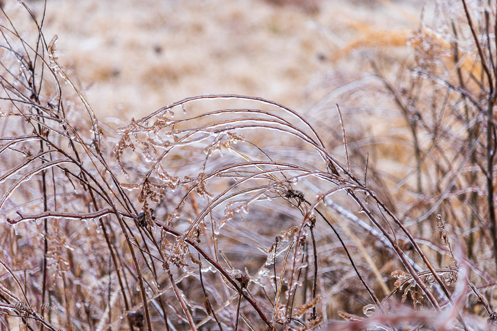 post your ice photos-untitled-2660.jpg
