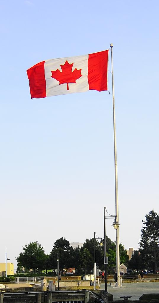 Post your flag shots-_pw10077.jpg