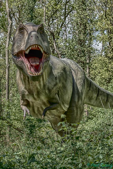 How about posting your HDR images?-t-rex-1.jpg