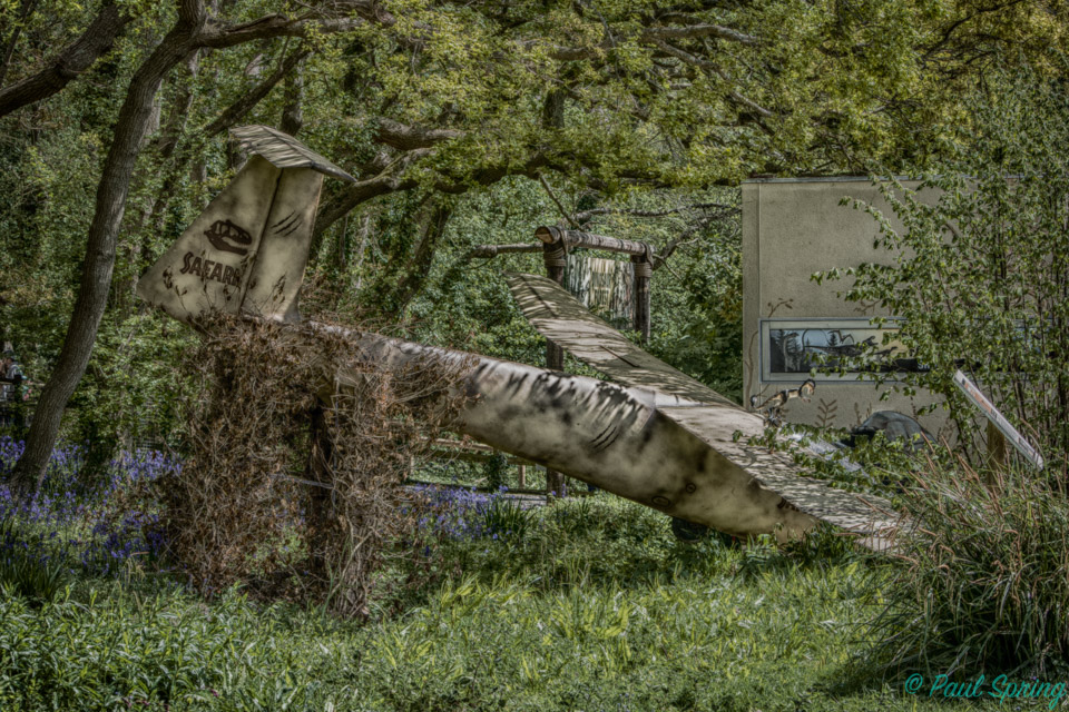 How about posting your HDR images?-safari-plane.jpg