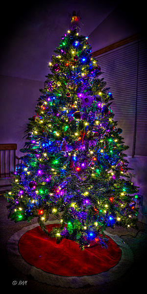 How about posting your HDR images?-hdr-tree.jpg