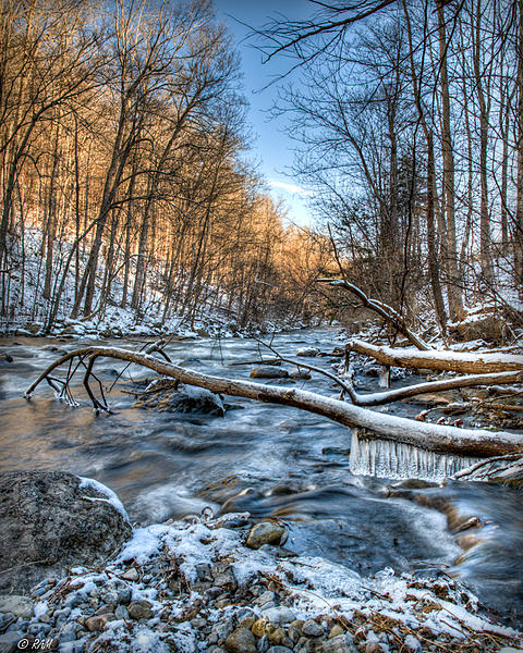 Post Your Landscape Photos-creek-verticle.jpg