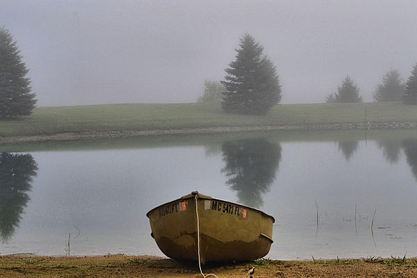 Post your fog shots-foggy-pond-resized.jpg