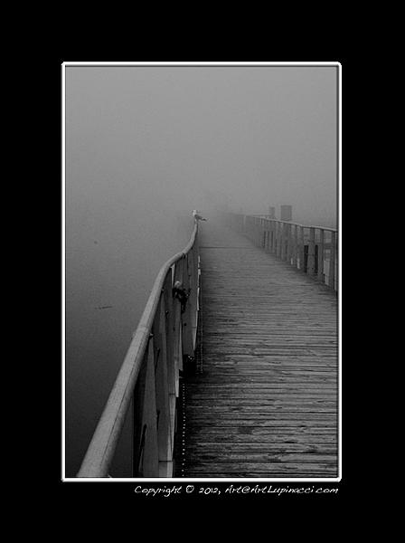 Post your fog shots-misty-morning-boardwalk.jpg