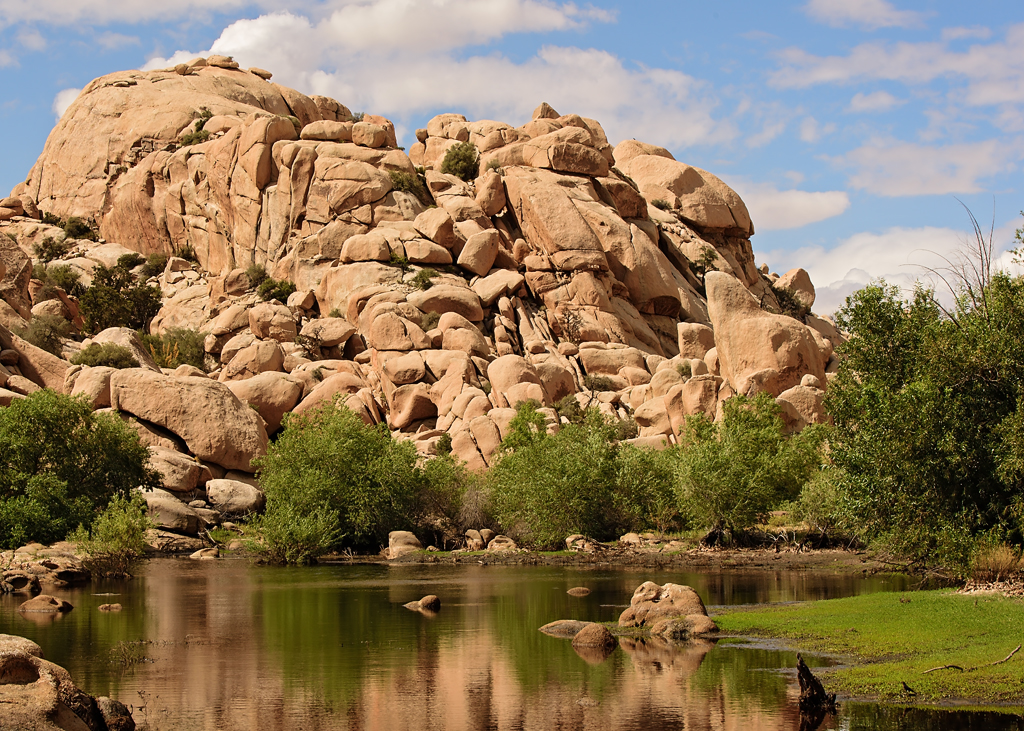 joshua tree national park single personals Matchcom, the leading online dating resource for singles search through thousands of personals and photos go ahead, it's free to look.