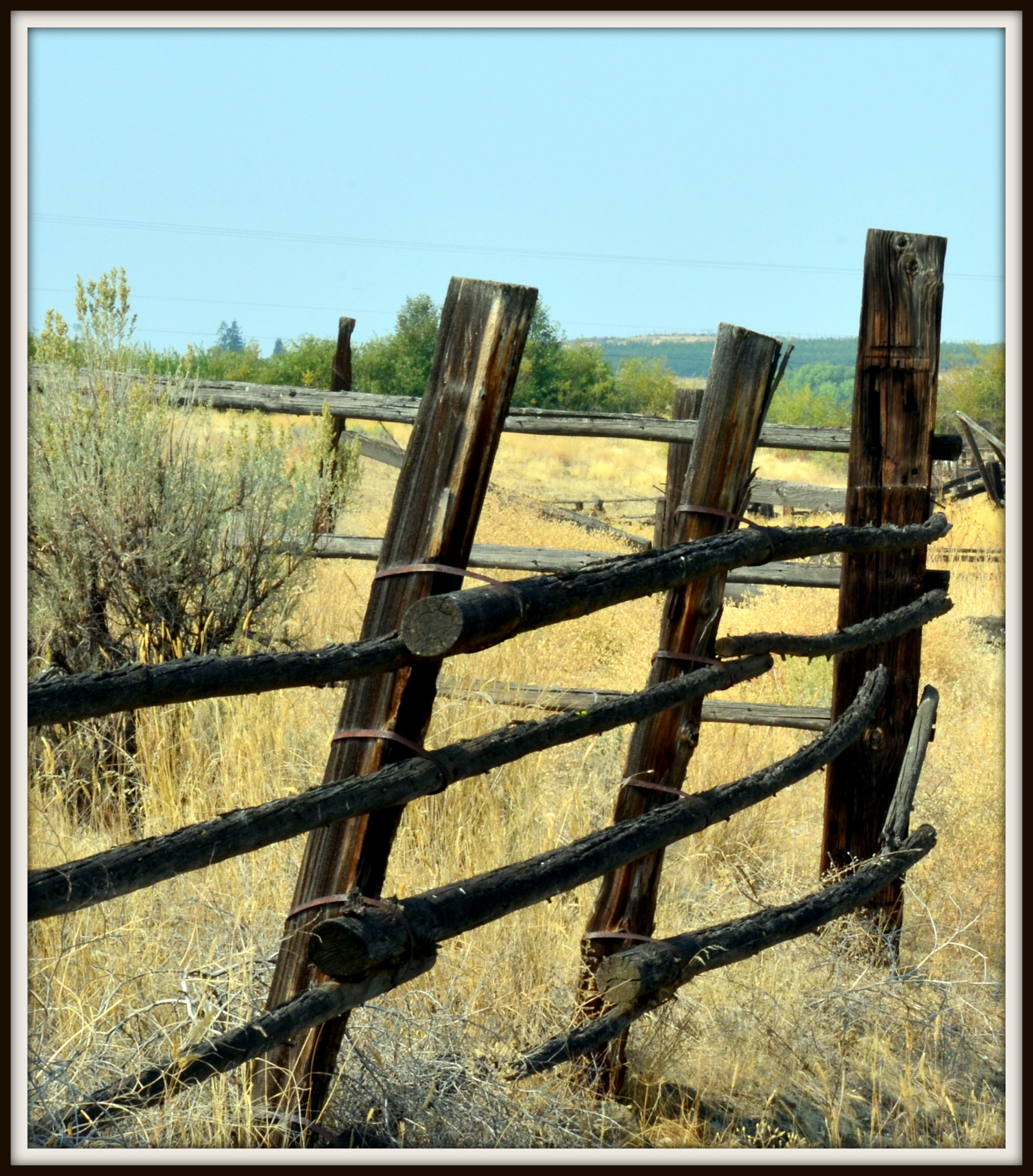 Post your fences - gates-cowiche-l-050.jpg
