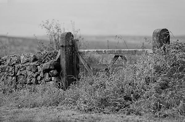 Post your fences - gates-gc2_2731-edit.jpg
