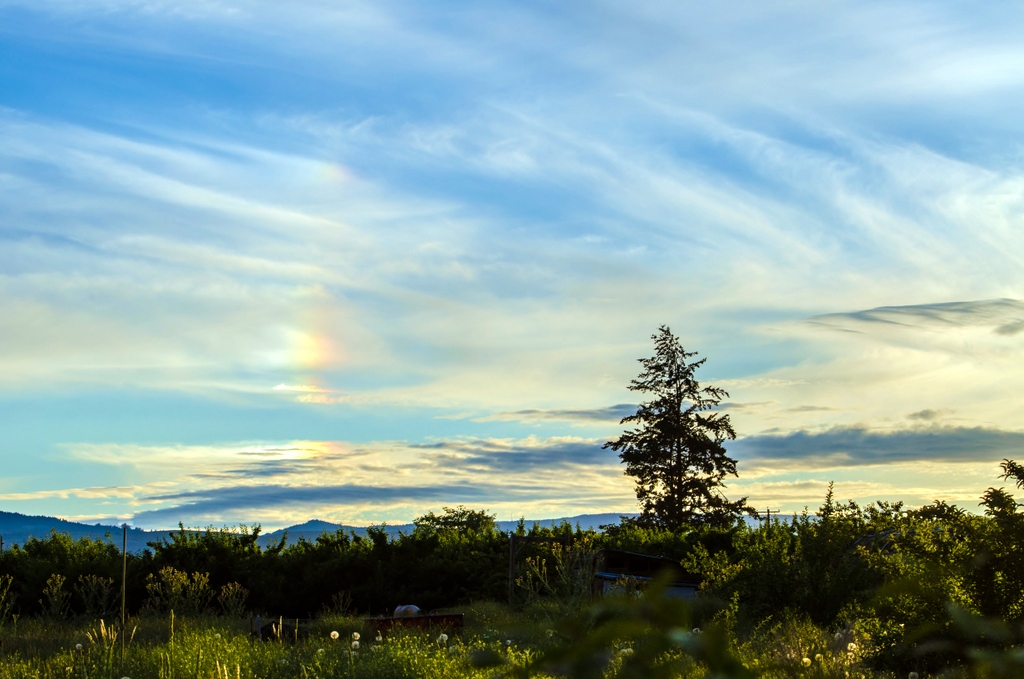 Is this my first sun dog-dsc_3852.jpg