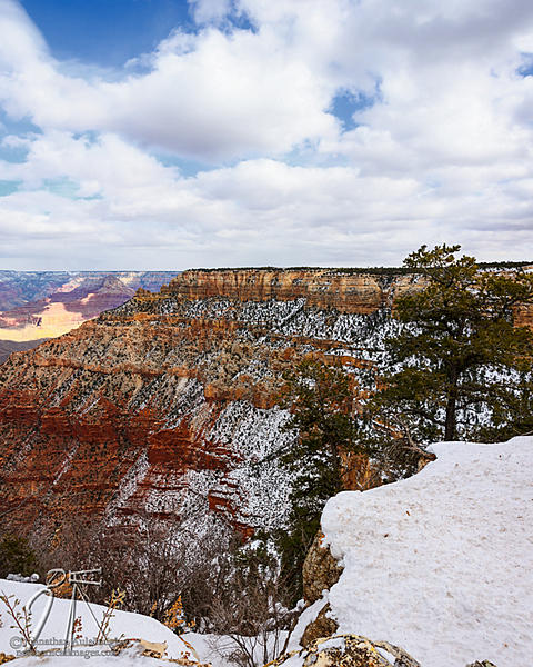 Post your vertical stitched photos-grand-canyon-vert-pano-edit.jpg