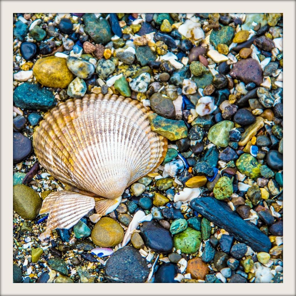 Post your seashore-dsc_0277.jpg