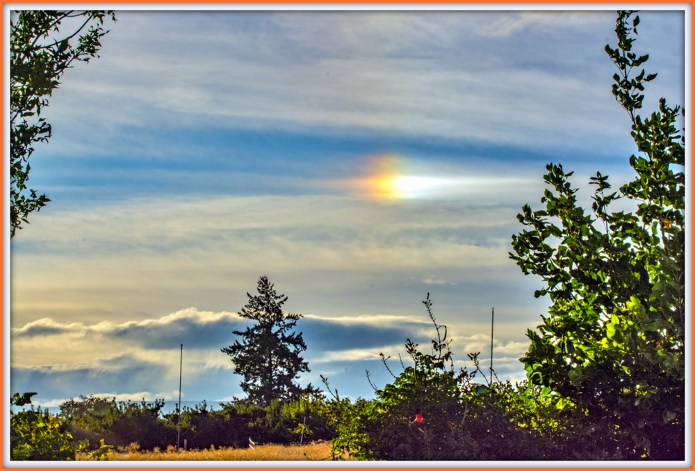 Is this my first sun dog-1-dsc_2666.jpg