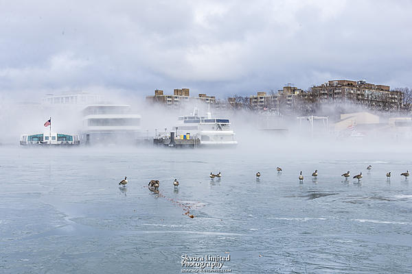 Post your fog shots-jan-12-dc-potomac-ice-fog_08.jpg