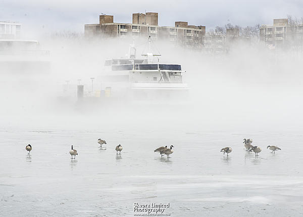 Post your fog shots-jan-12-dc-potomac-ice-fog_09.jpg