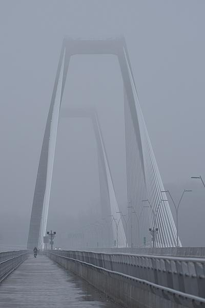 Post your fog shots-east-end-bridge.jpg