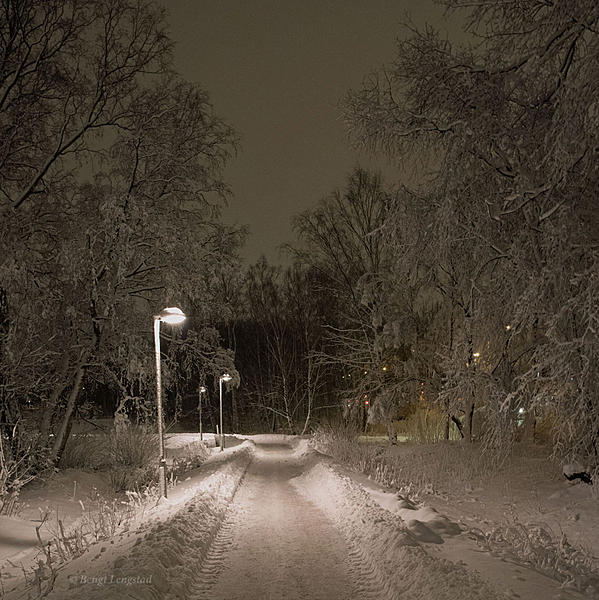Post your snow event-d810-7004.jpg