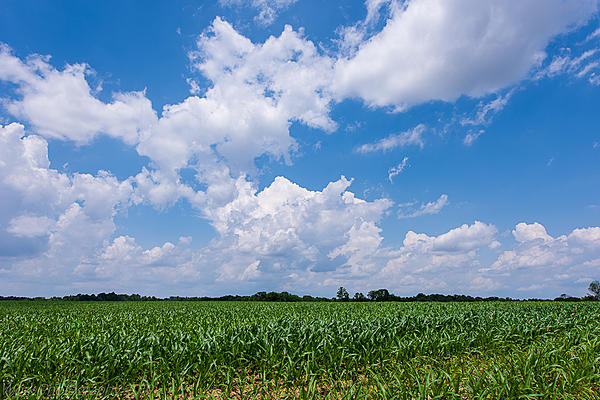 Post your Cloudscape Photos-untitled-shoot-5118.jpg