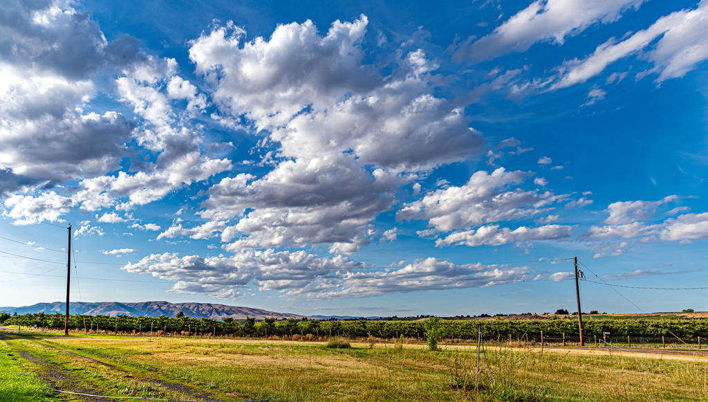 Post your Cloudscape Photos-750_3245-hdr-pano.jpg