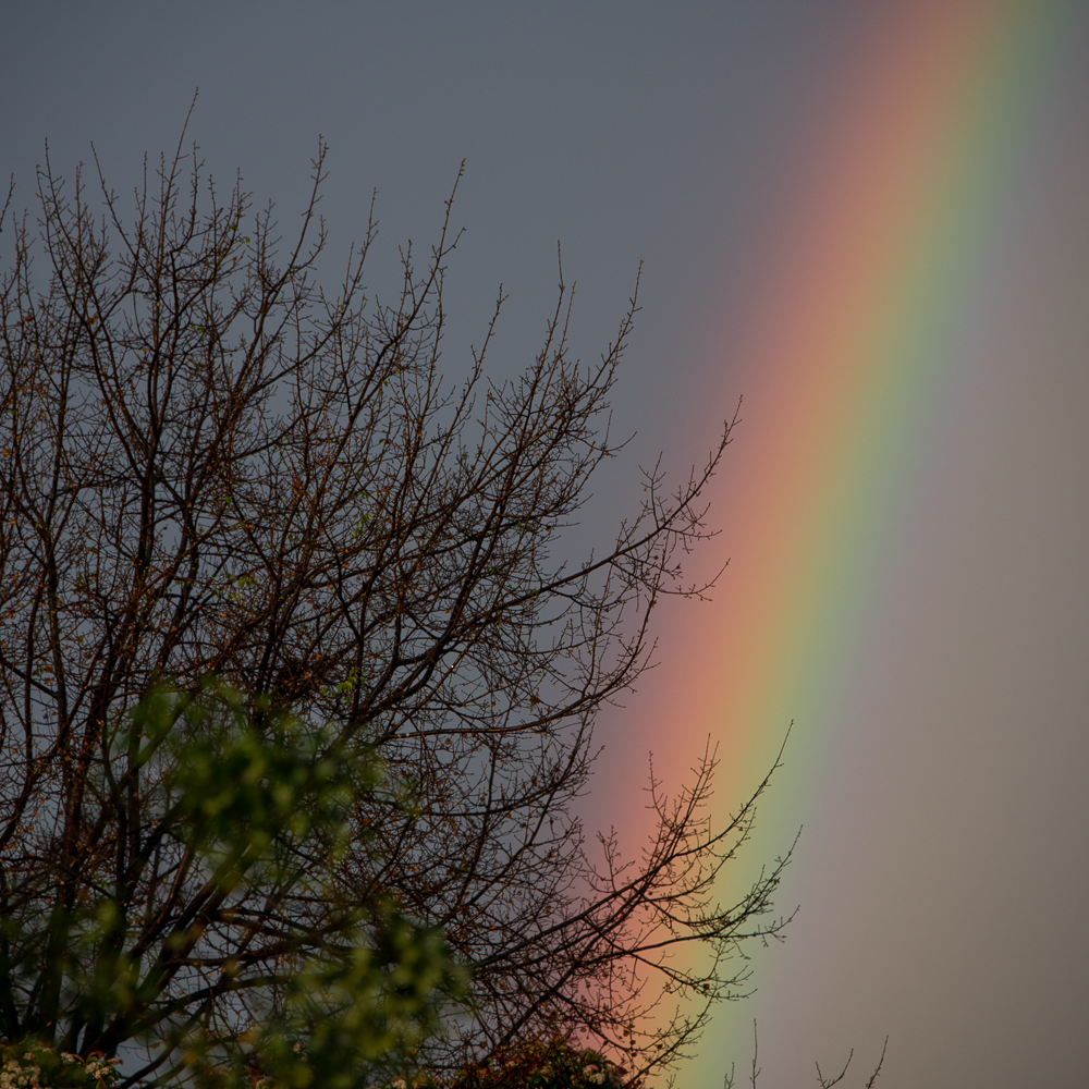 Post your Rainbows-storm-16th-2.jpg