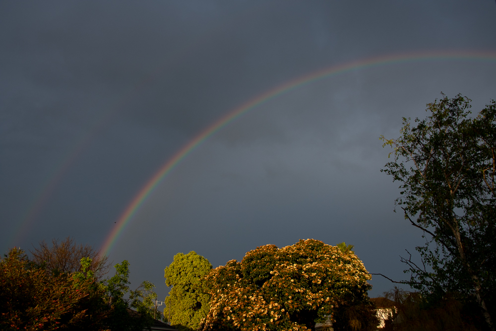 Post your Rainbows-storm-16th-7.jpg