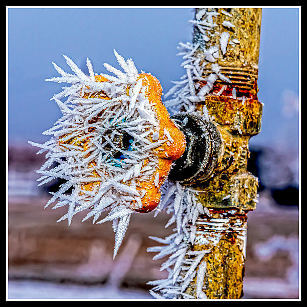 Post your frozen fog shots-750_9213-edit.jpg