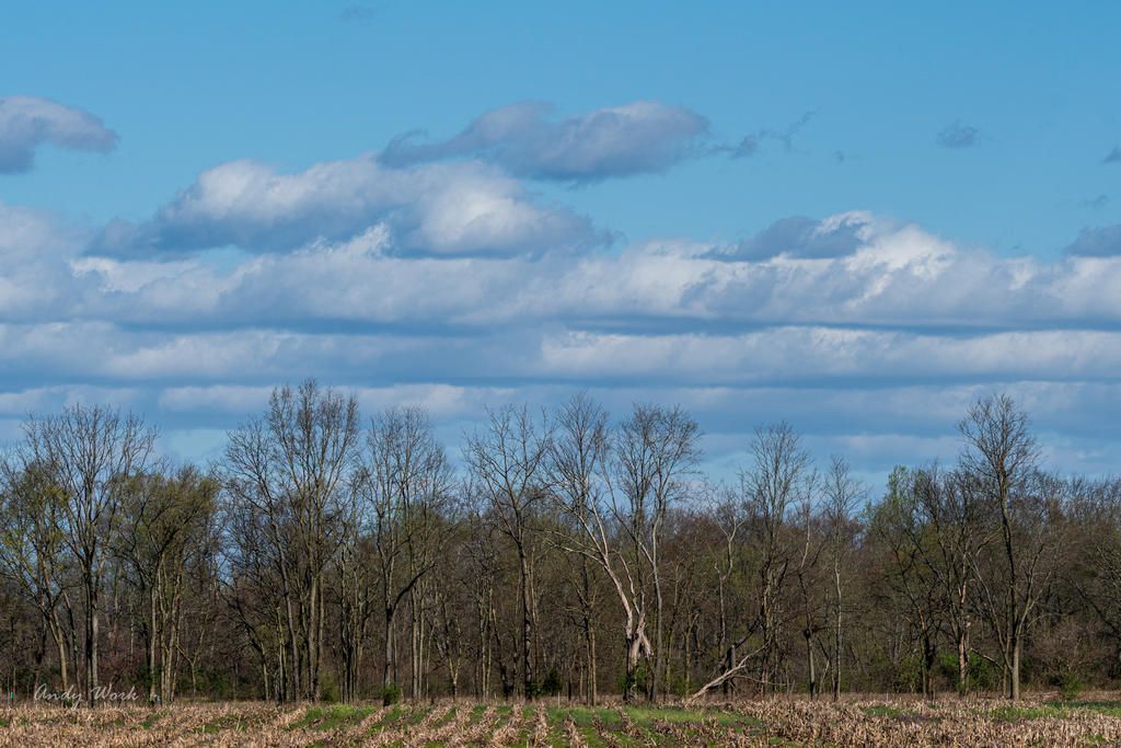 Post your Cloudscape Photos-untitled-506473.jpg