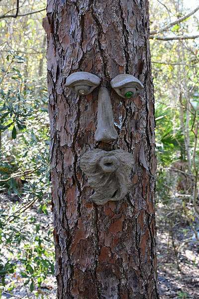 """Post Your """"Tree People"""" Pictures-tree-person-1.jpg"""