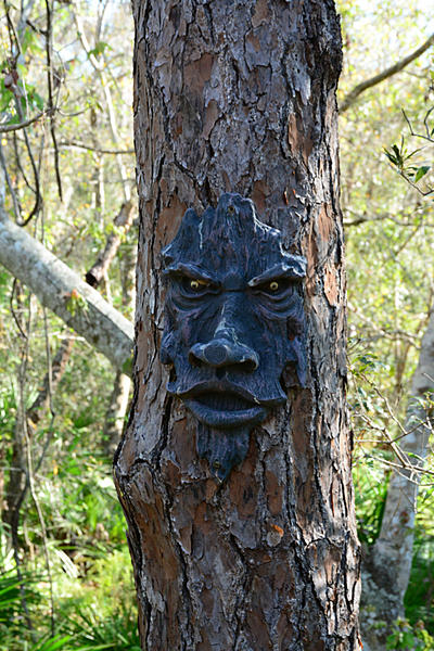 """Post Your """"Tree People"""" Pictures-tree-person-3.jpg"""