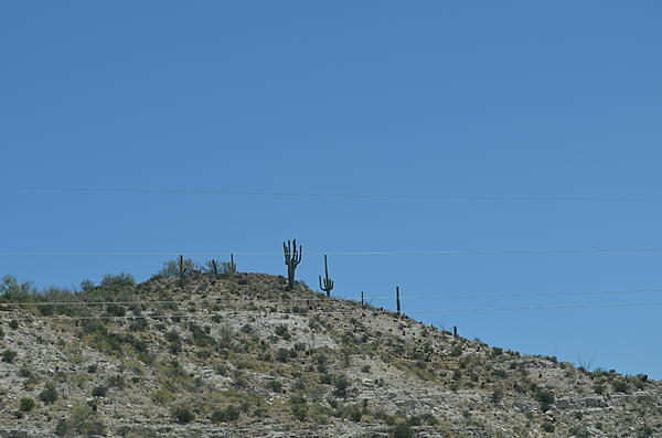 Roaming The Southwest USA-dsc_0155_2148.jpg
