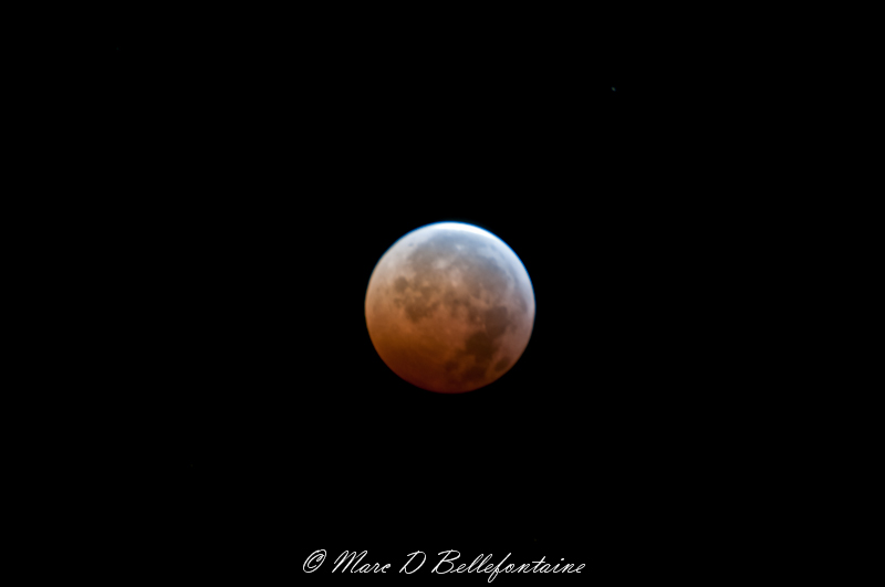 Moon Eclipse Tonight http://nikonites.com/low-light-night/1731-full-eclipse-moon-tonight-3.html