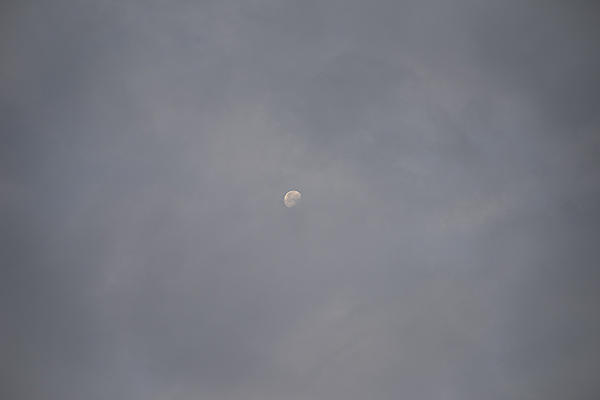 Moon Shots-nik_0401.jpg