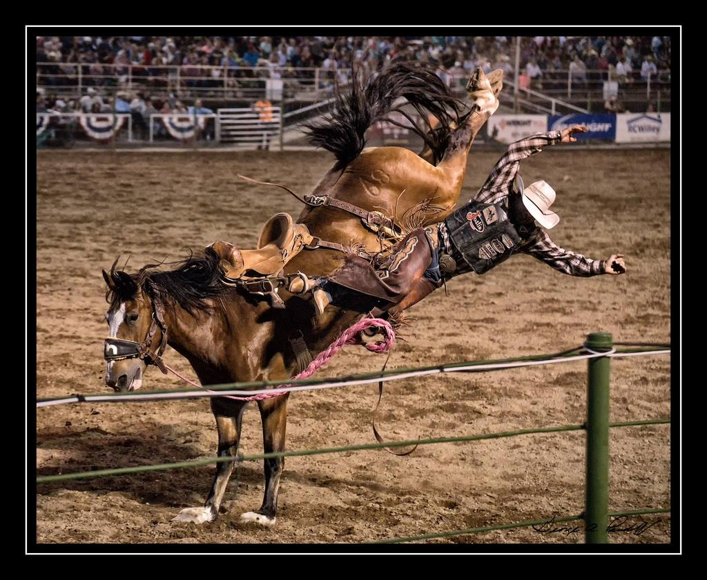 Night sports photography-rodeo.jpg