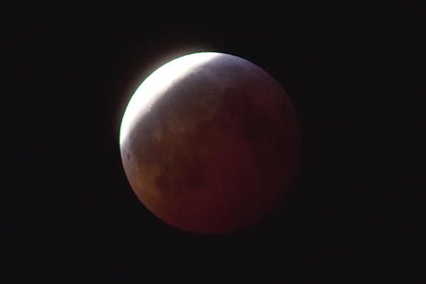 Super Moon - Total Lunar Eclipse - Jan 20 - Tips from Nikon-_moon_01.jpg