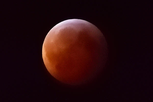 Super Moon - Total Lunar Eclipse - Jan 20 - Tips from Nikon-_moon_02.jpg