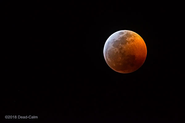 Moon Shots-blood-moon-n-500_8115.jpg