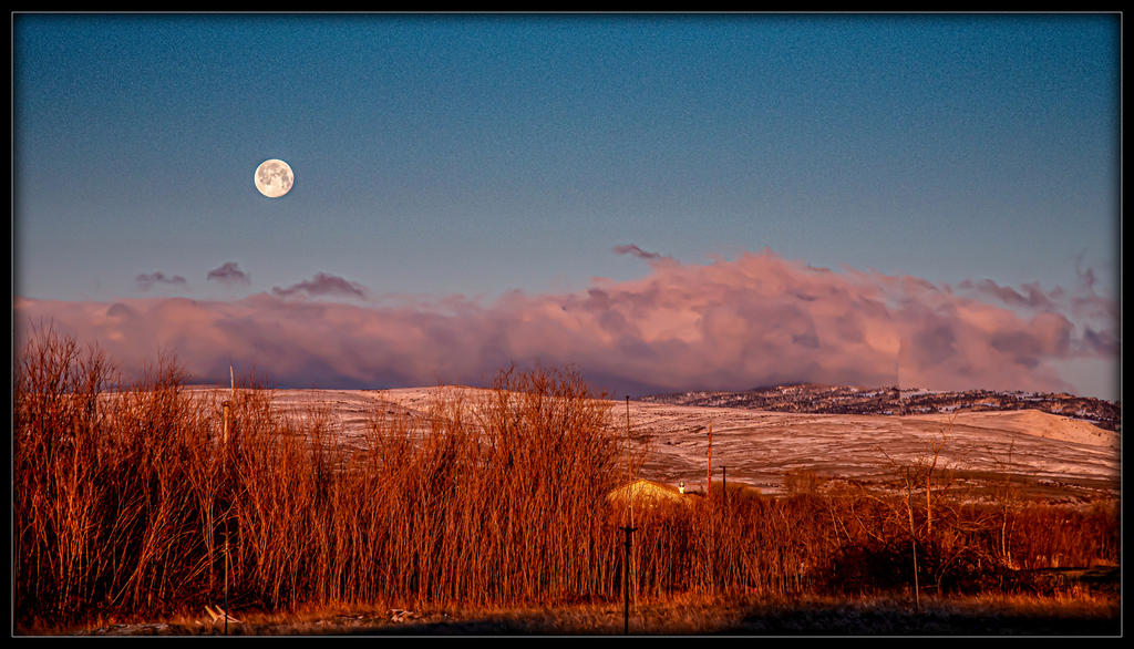 Post your Moon Shots-_7501024-edit-2.jpg