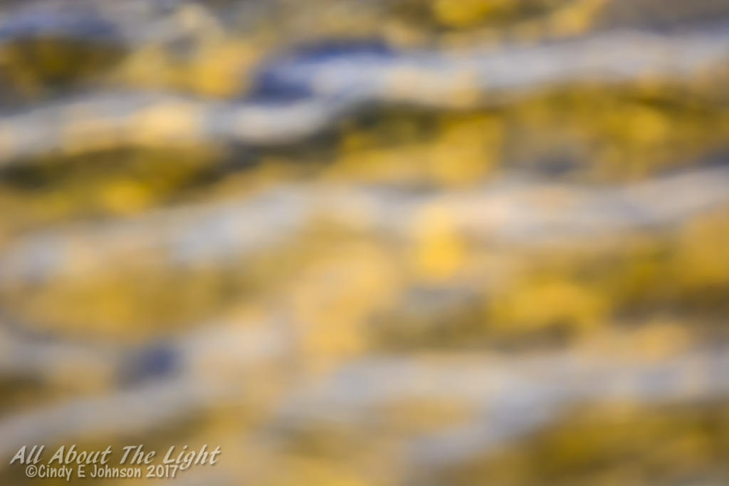 September 2017 Assignment: ABSTRACT-dsc_3517-low-res.jpg