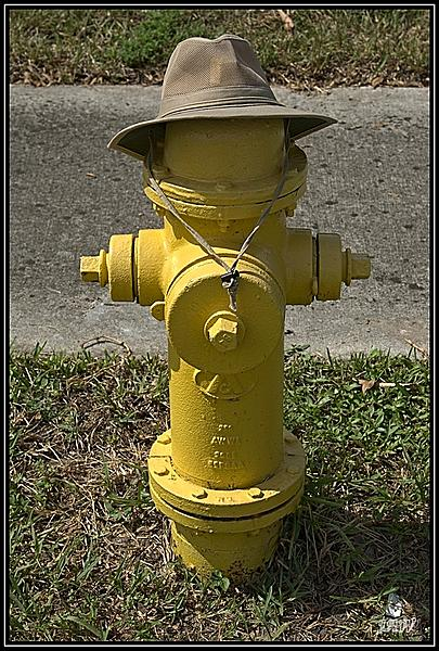 July 2020 Assignment - Fire Hydrants/Manhole Covers-_71d2931_web.jpg