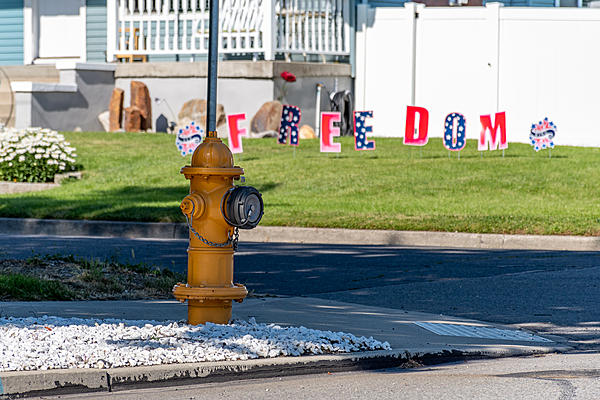 July 2020 Assignment - Fire Hydrants/Manhole Covers-d75_0341.jpg