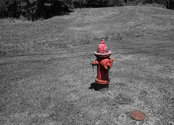 July 2020 Assignment - Fire Hydrants/Manhole Covers-hydrant2.jpeg