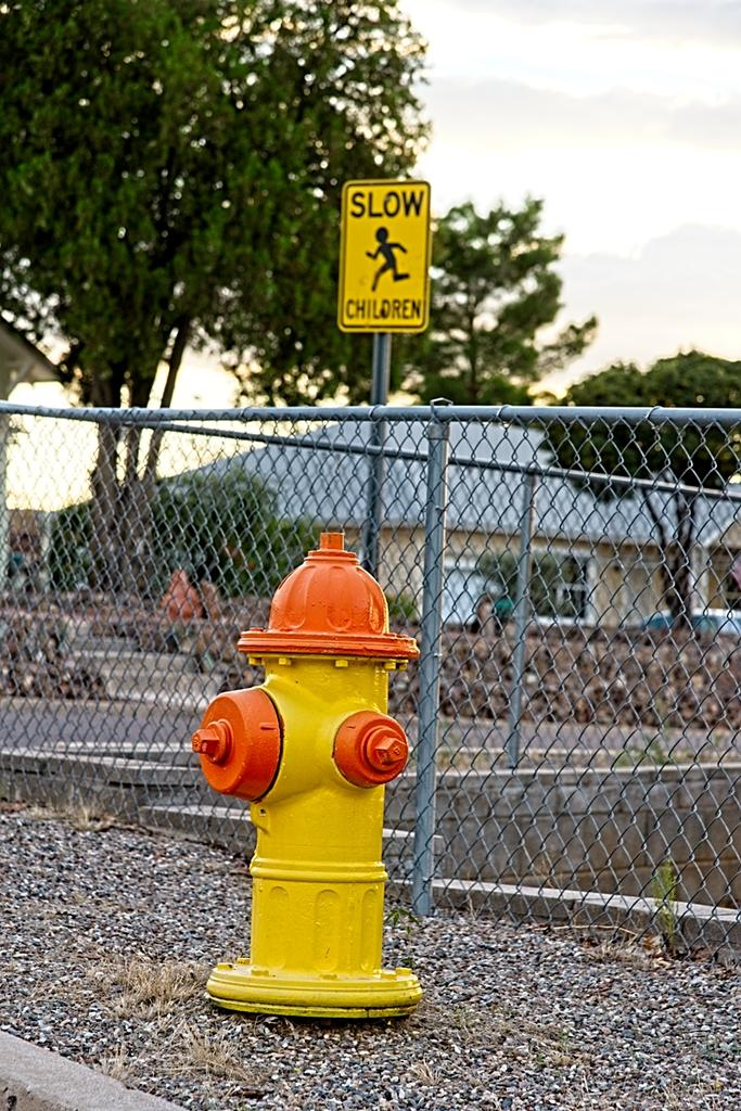 July 2020 Assignment - Fire Hydrants/Manhole Covers-07-25-2020_cr_7502741-on1.jpg