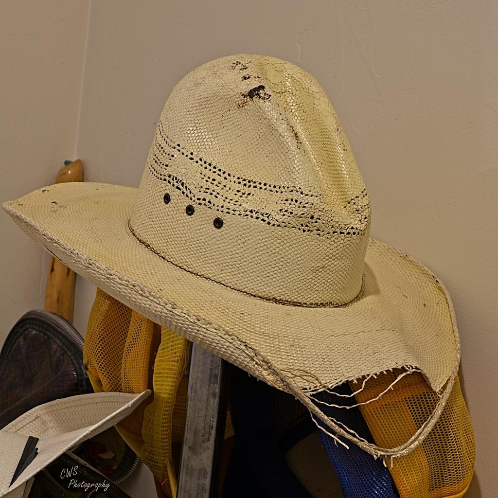 August 2021 Monthly Assignment: Hat(s)-08-31-21-cr-_7505517-on1.jpg