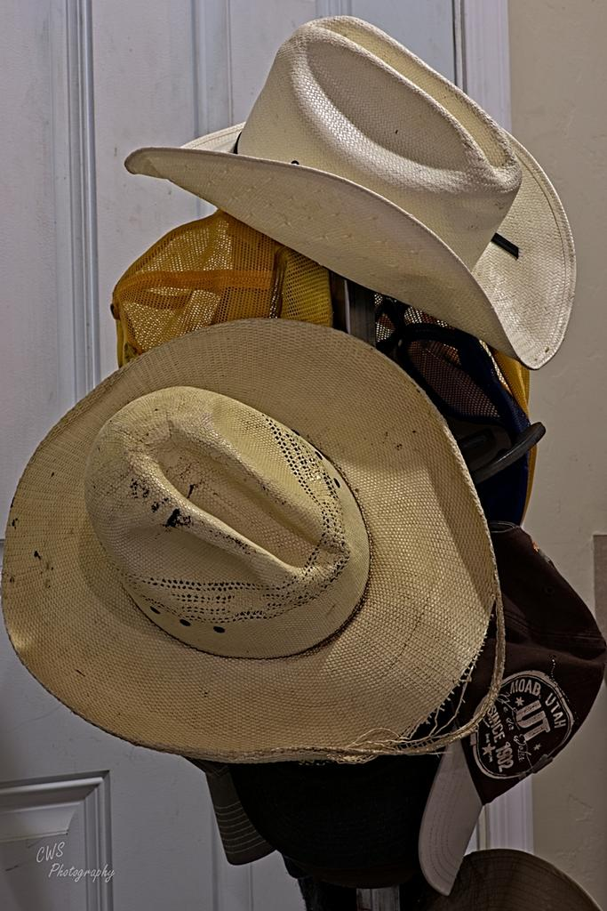 August 2021 Monthly Assignment: Hat(s)-08-31-21-cr-_7505519-on1.jpg