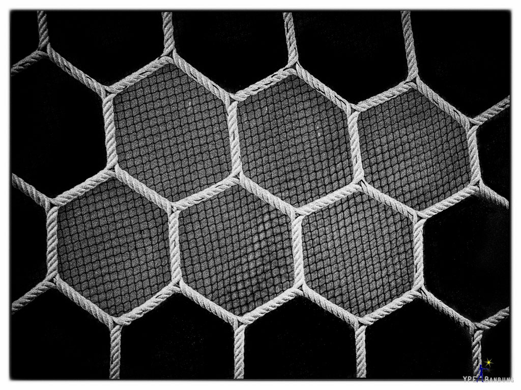 Non Nikon Black/White-net2.jpg