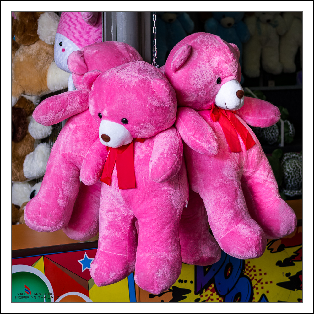 Michael's Photo Thread-pink-bears-1.jpg