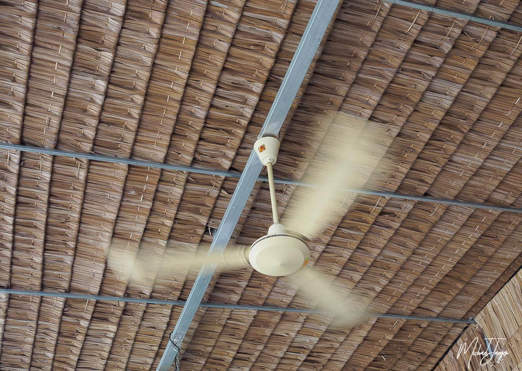 Michael's Photo Thread-ceiling-fan-1.jpg