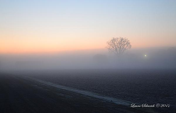 Post your facebook cover photo-frosty-morning.jpg