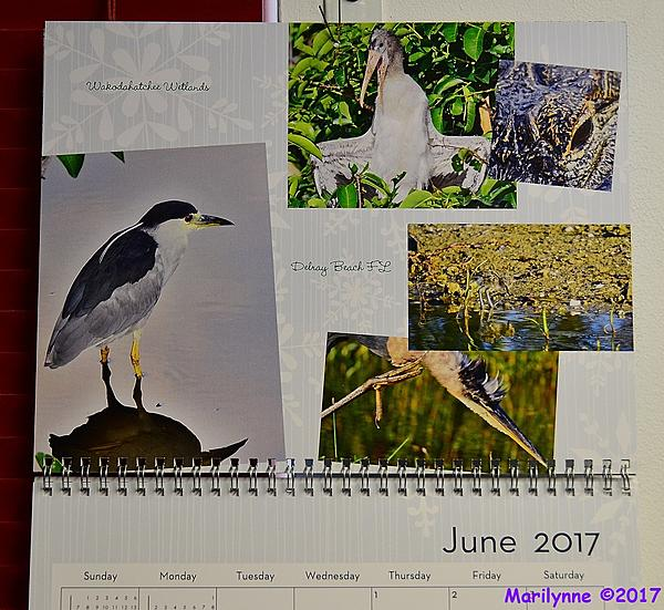 Looking for a new custom calendar.-dsc_5974_001.jpg